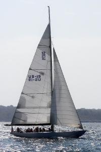 Nefertiti US-19